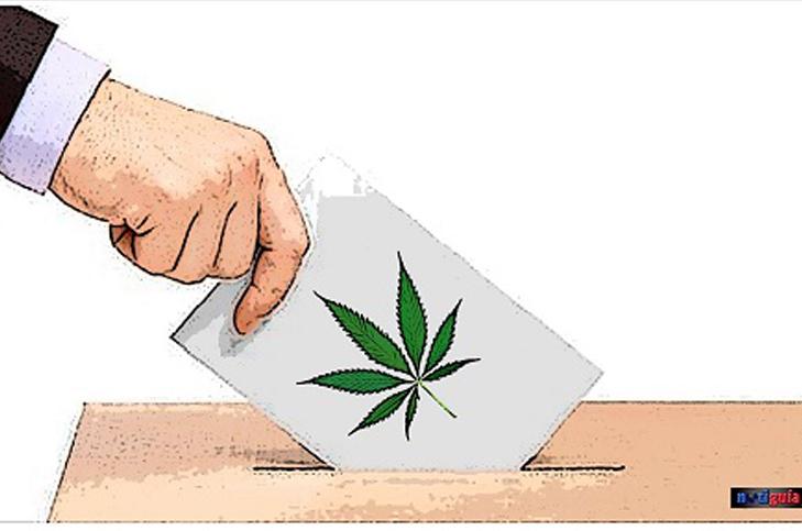 MARIGUANA-voto-debate
