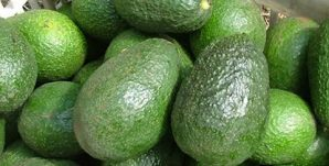aguacate-aguacate