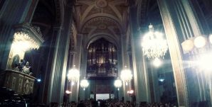 catedral-organo