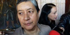 Silvia Hernández Capi