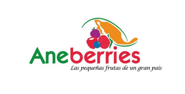 aneberries-logo