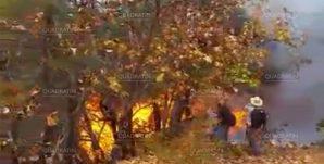 incendio-cerrop