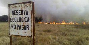 Incendio-reserva