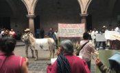 Llevan caballos y chivos a manifestación en ayuntamiento de Morelia